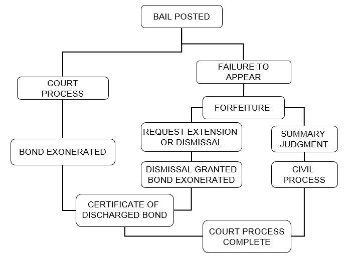 Bail Bond Process Graphic