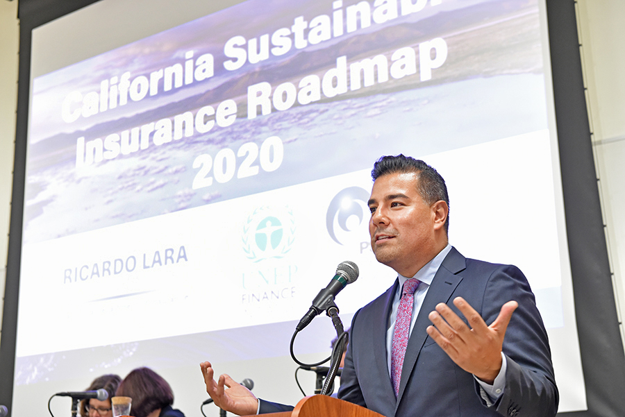 Sustainable Insurance Roadmap