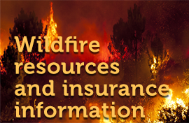 Wildfire resources and insurance information